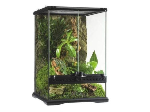 EXO TERRA GLASS TERRARIUM MINI TALL