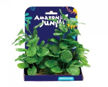 AMAZON JUNGLE ANUBIUS PLASTIC PLANT DISPLAY 15CM