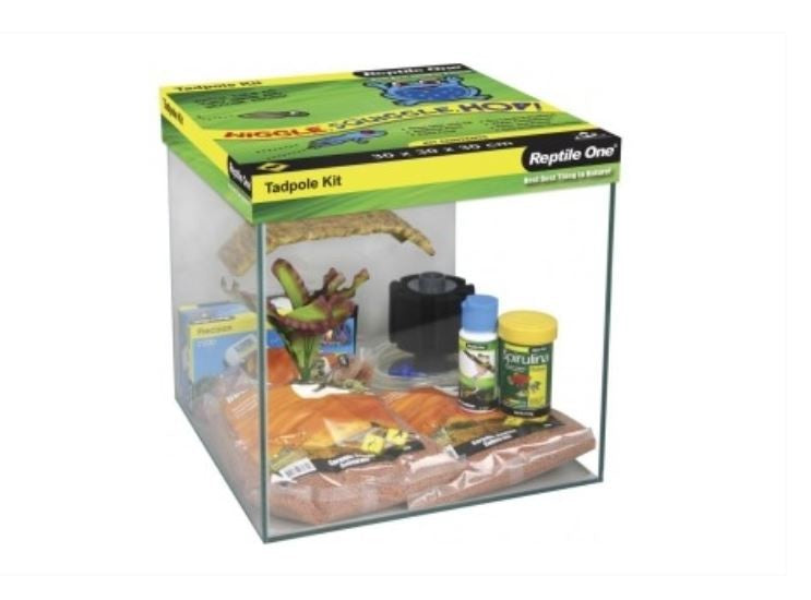 REPTILE ONE TADPOLE KIT GLASS