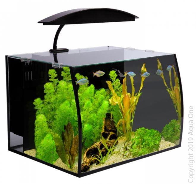 AQUA ONE ARC 30 GLASS AQUARIUM BLACK