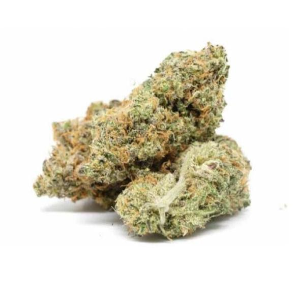 Cheese CBD Indoor - Fleurs CBD