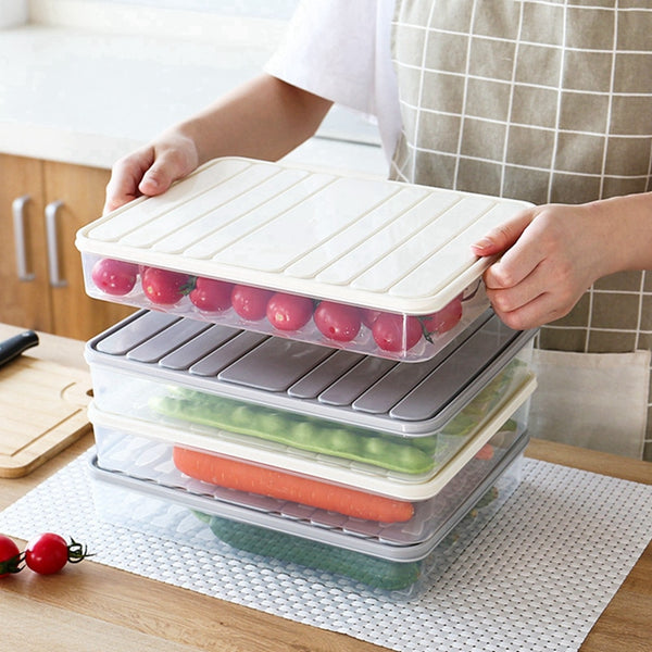 Refrigerator Food Storage Container - Storage Boxes & Bins -  - Arezel.com
