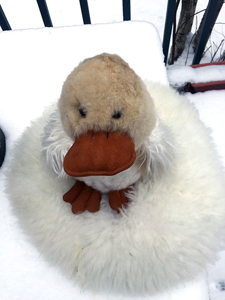 Alpaca Stuffed Toy - Duck