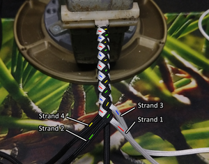 Custom Cables - Plaited