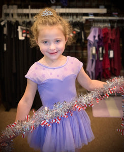 Mesh Top Leotard and Tutu Skirt with Free Tiara