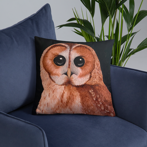 Painted Owl Pillow