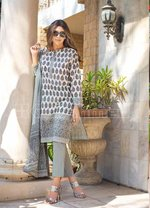 Printed Lawn Unstitched 3 Piece Suit CL-651 A