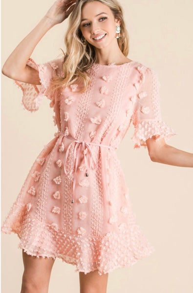 Blush Embroidered Detail Dress - The Pink Petal Boutique