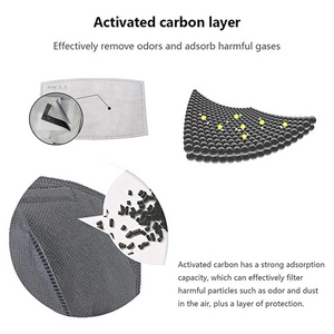 Additional PM 2.5 Carbon Filters