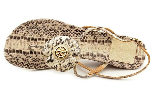 TORY BURCH Snakeskin Shelby Flower FLAT  CASUAL THONG Sandals