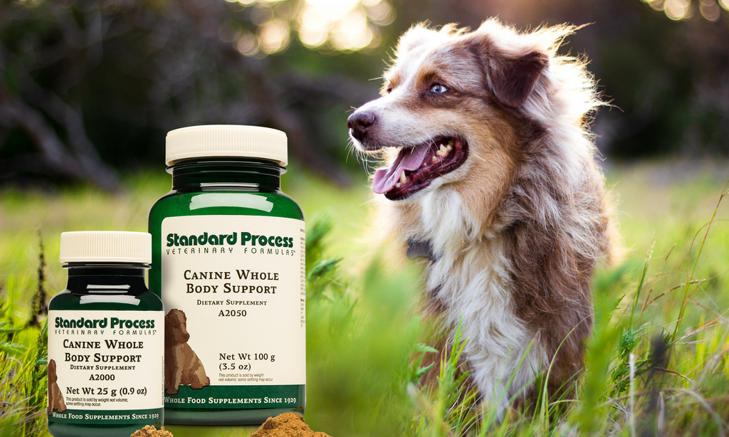 Standard Process Canine Whole Body Support