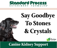 Standard Process Canine Renal Support