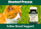 Standard Process Feline Renal Support | Kidney Healing For Cats