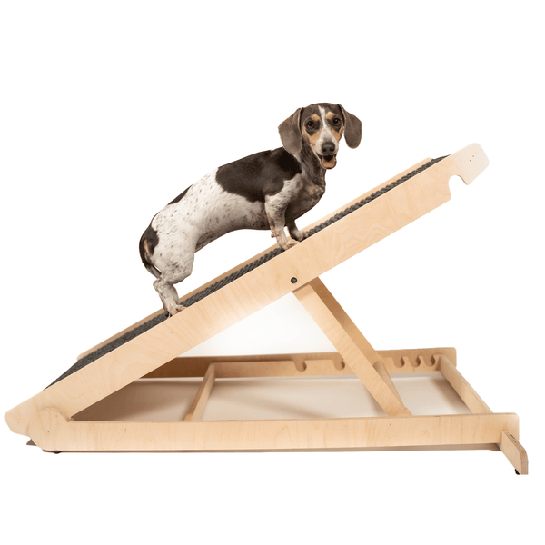 "USA Made Dog Ramp For Bed or Couch - Adjustable from 14"" to 24"" Inches - Holds Over 200LBS -  For Small or Large Dogs"