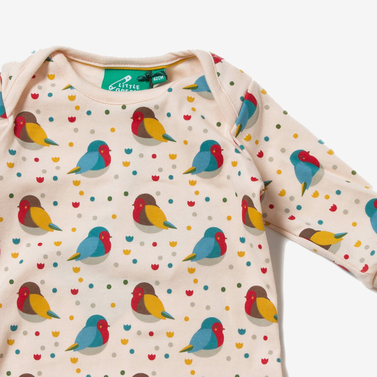 Rainbow Robins Playsuit