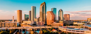 The Ultimate & Honest Guide To The Best Tampa Neighborhoods