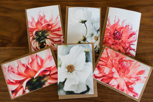 Fresh Blooms Card Set