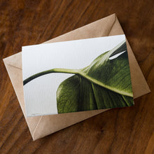 Load image into Gallery viewer, Plant Lover Card Set