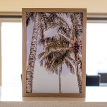 Load image into Gallery viewer, Noosa Palms