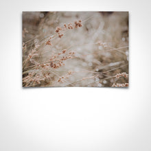 Load image into Gallery viewer, Macro Grass Brown