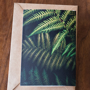 Urban Fern Card