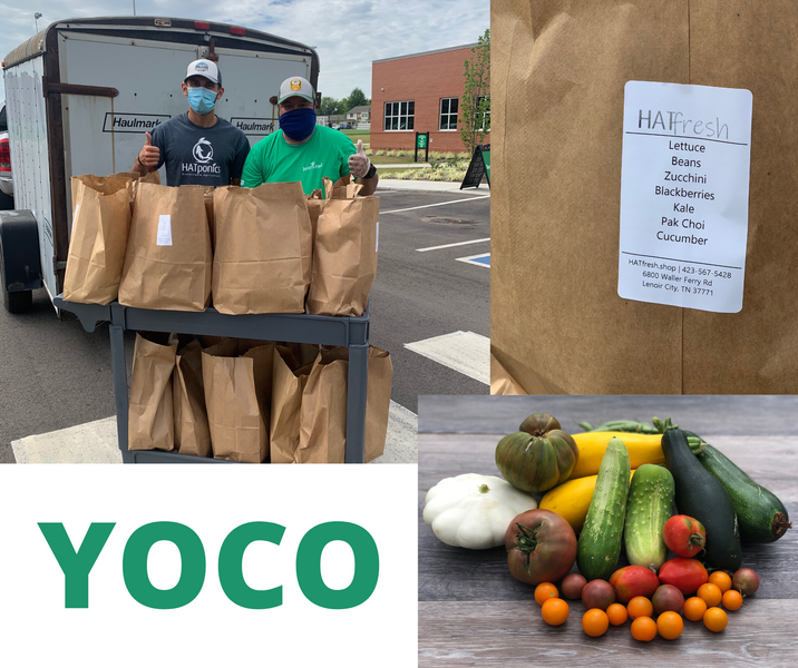 YOCO Project: Feed Our Youth!