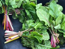 Load image into Gallery viewer, Swiss Chard