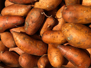 Sweet Potato U.S. No. 1 | 4lb Bag
