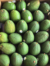 Load image into Gallery viewer, Hass Avocado