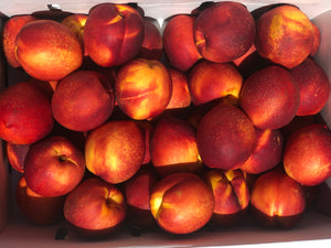 Nectarines Large | 4ct
