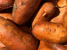 Load image into Gallery viewer, Sweet Potato U.S. No. 1 | 4lb Bag