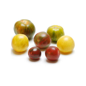 Mixed Medley Tomatoes | NY Grown - Fruits To Go NYC