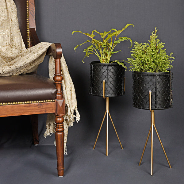 Moroccan Forged Planter (Set of 2) - Black