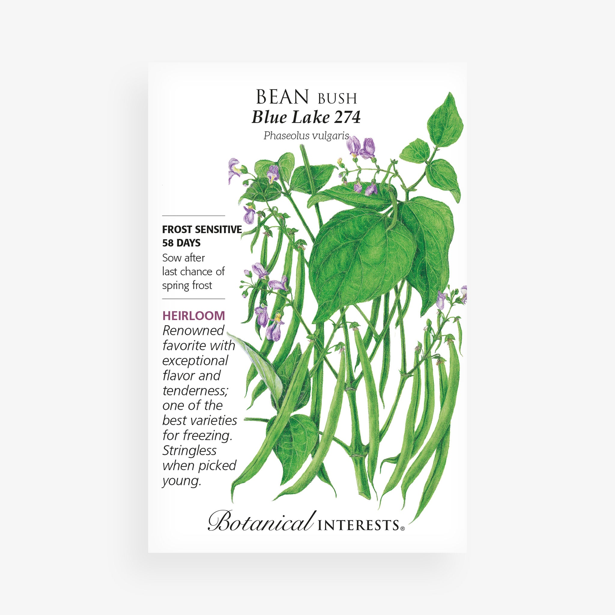 'Blue Lake 274' Bean Seed Packet