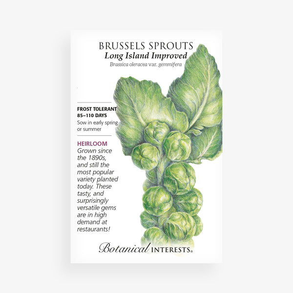 'Long Island' Brussels Sprout Seed Packet