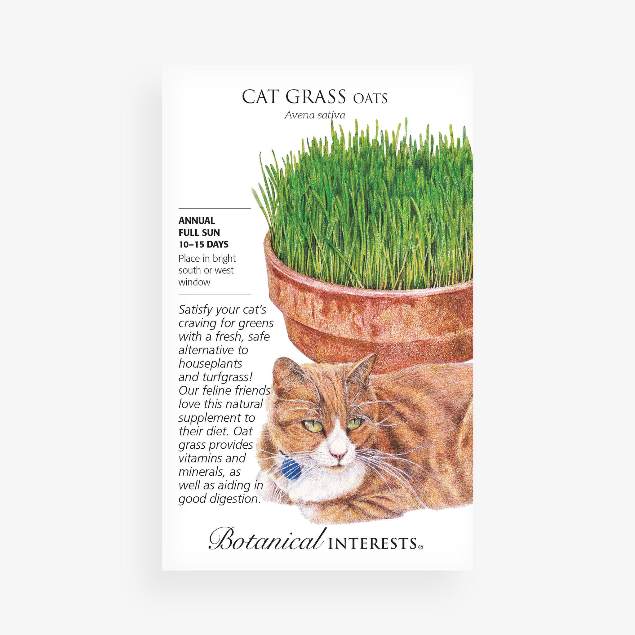 Cat Grass Oats Seed Packet