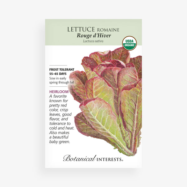'Little Gem' Romaine Lettuce Seed Packet