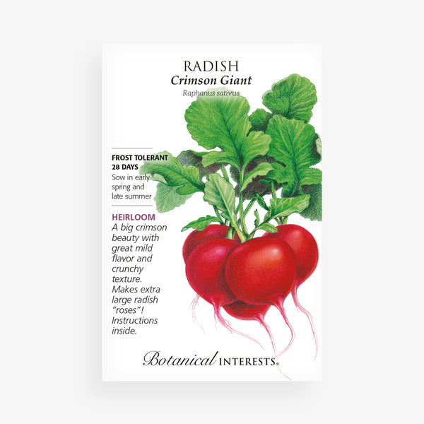 'Crimson Giant' Radish Seed Packet