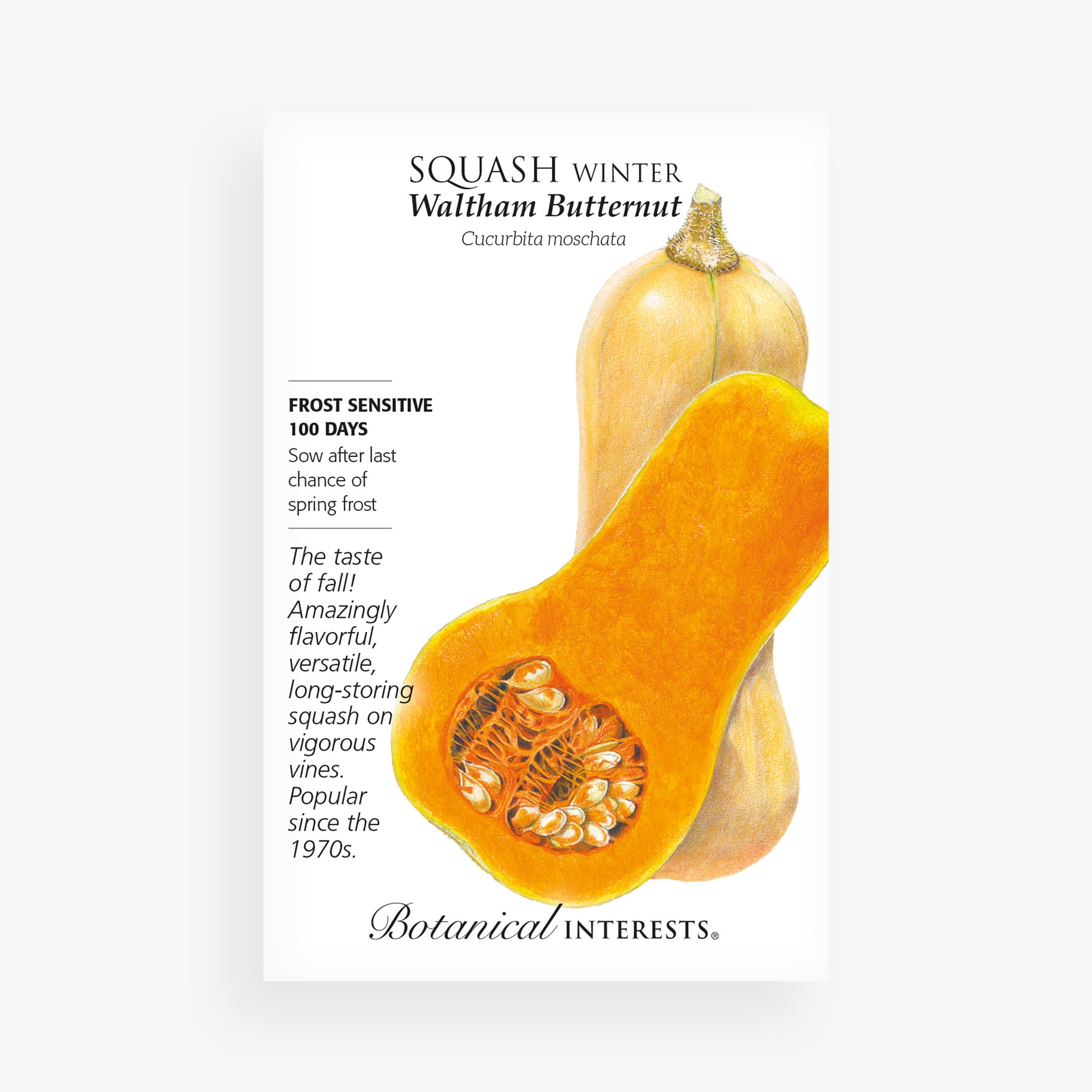'Waltham Butternut' Winter Squash Seed Packet