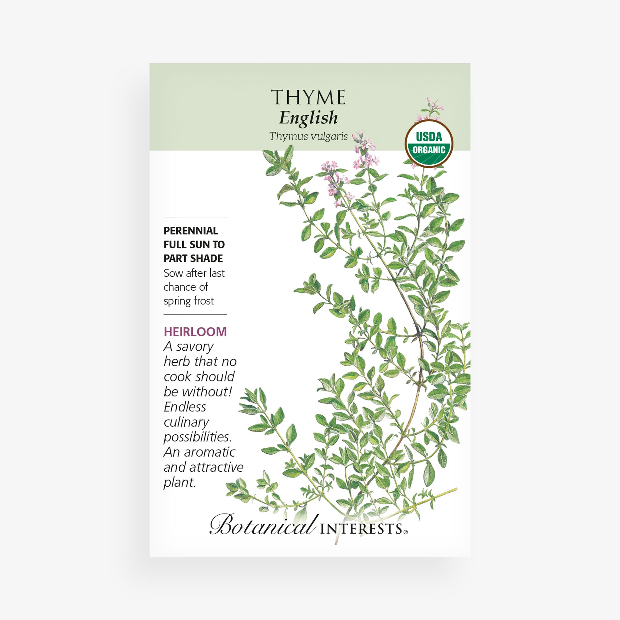 'English' Thyme Seed Packet
