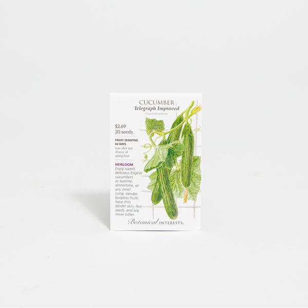 'Telegraph Improved' English Cucumber Seed Packet