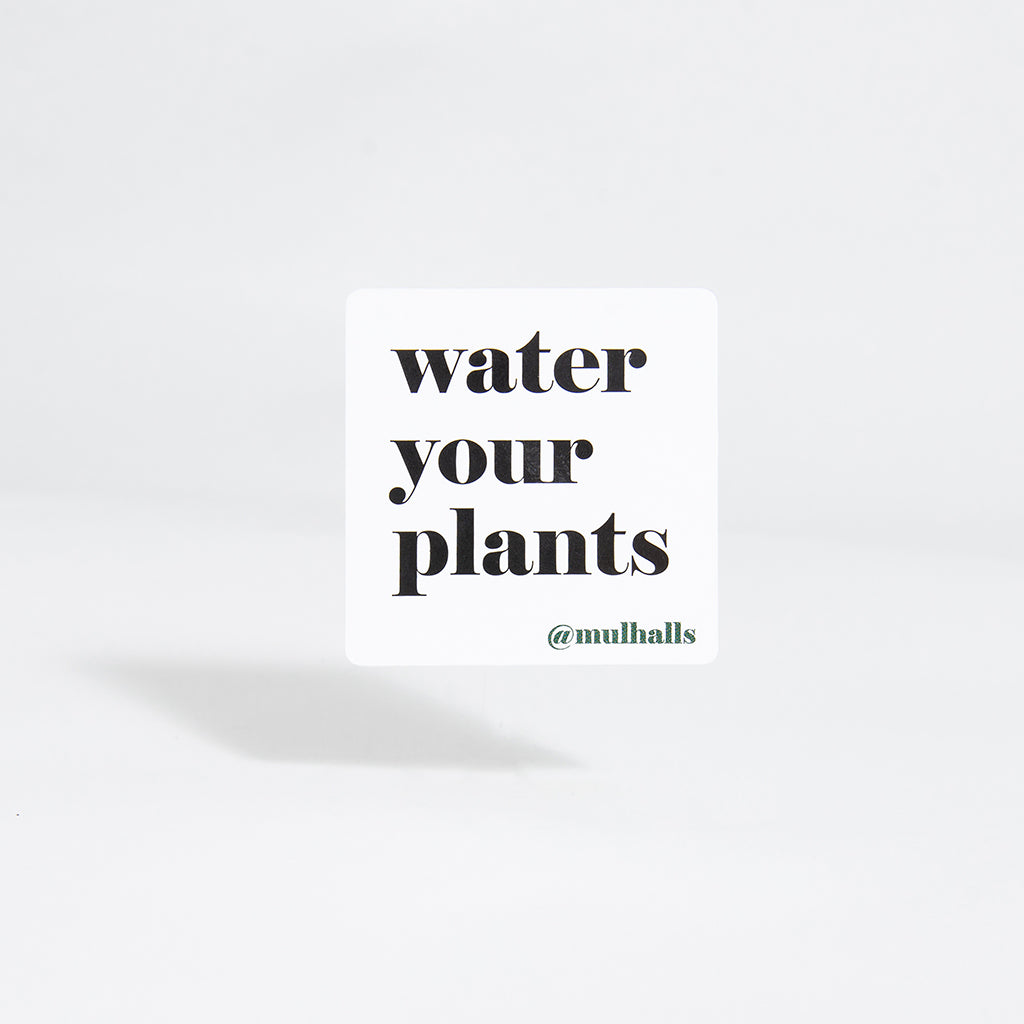 Water Your Plants Sticker
