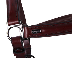 Kingsley Leather Halter Chestnut
