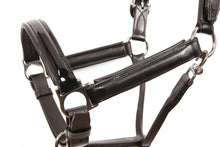 Load image into Gallery viewer, Kingsley Leather Halter Patent