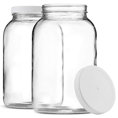 1-Gallon Glass Jar  Plastic Lid 2 Pack - Finedine | The Best And Beyond