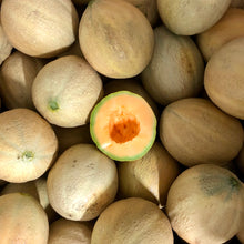 Load image into Gallery viewer, Cantaloupe