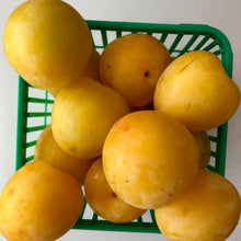 Load image into Gallery viewer, Yellow plums