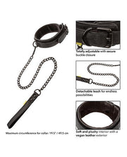 Boundless Collar & Leash - Black