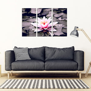 Water Lily 3 Piece Framed Canvas - Clicksstars