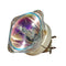 Optoma LTOBX600PPH Philips FP Lamps Bare